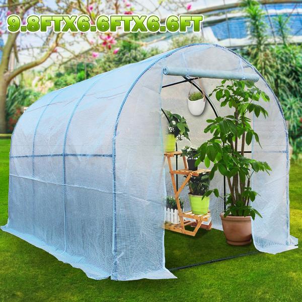 Plants, Outdoor, Gardening, planter