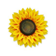 Sunflowers, 3dwallsticker, walldecorsticker, Stickers