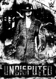 WWE, 2018wrestlingcard, Wrestling, undertaker