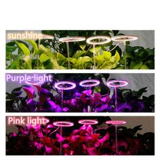 Lamp, Flowers, led, usb