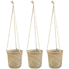 hangingflowerbasket, Plants, flowerpot, courtyarddecoration