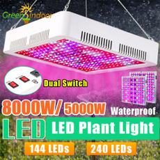 Plants, lights, led, Garden