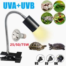 Turtle, Light Bulb, reptilelightbulb, uvbreptilelight