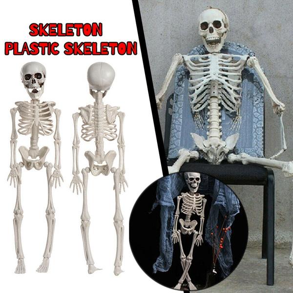 medicalmodel, skeletonmodel, Decor, Skeleton