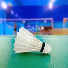 badmintonshuttlecock, solid, wearresistant, badmintonball