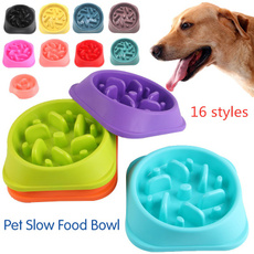 puppy, Colorful, petfeeder, Pets