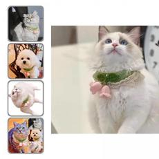 cute, Dog Collar, petaccessorie, Pets
