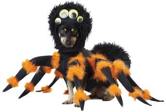 wig, halloween hoody, Cosplay, Mascotas