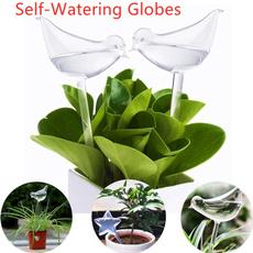 Plants, Flowers, Gardening, selfwatering