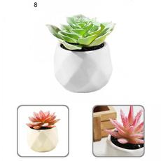 succulentdecor, Modern, artificialdecor, Home & Living