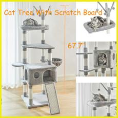 cathouse, Gray, cattoy, catcondo